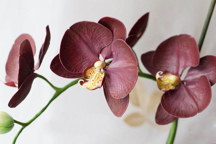 Однако иногда искусственный цветок из фоама выглядит намного эффектнее живого, согласитесь?