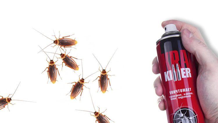 Спрей следует направлять в места скопления насекомых