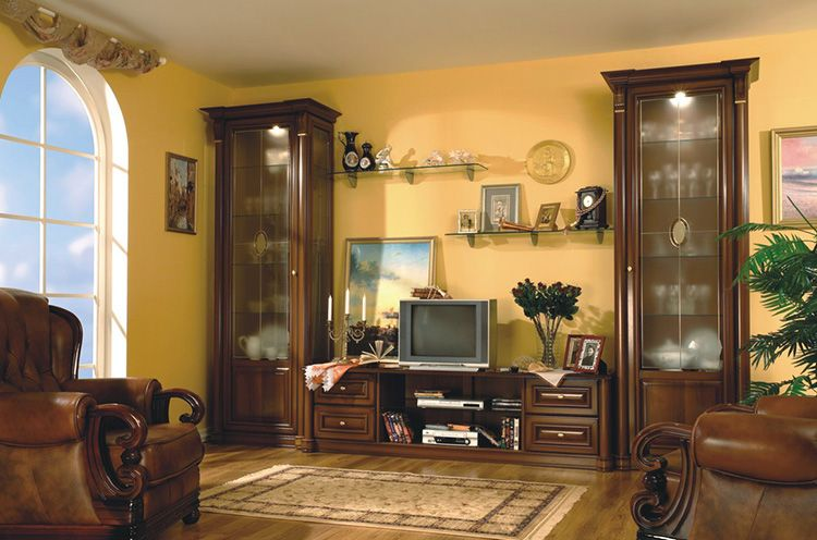 Пример того, как расставить мебель в зале в классическом стиле