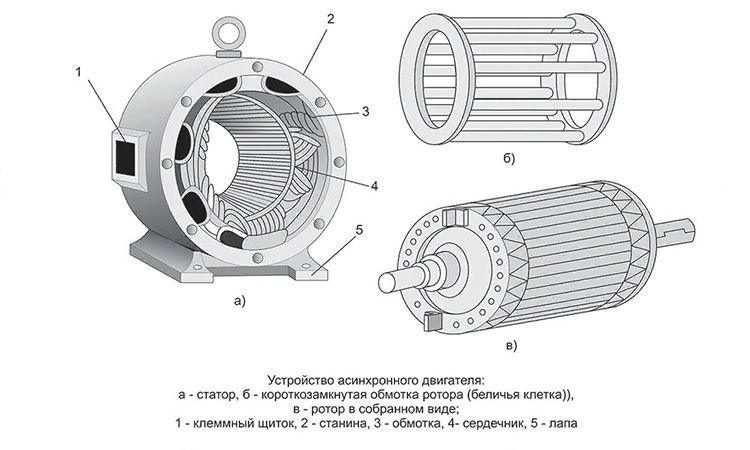 Устройство асинхронного двигателя.