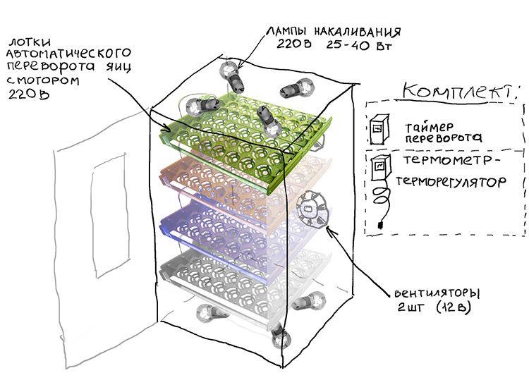 Устройство включает всё необходимое для создания комфортных условий для птенцов