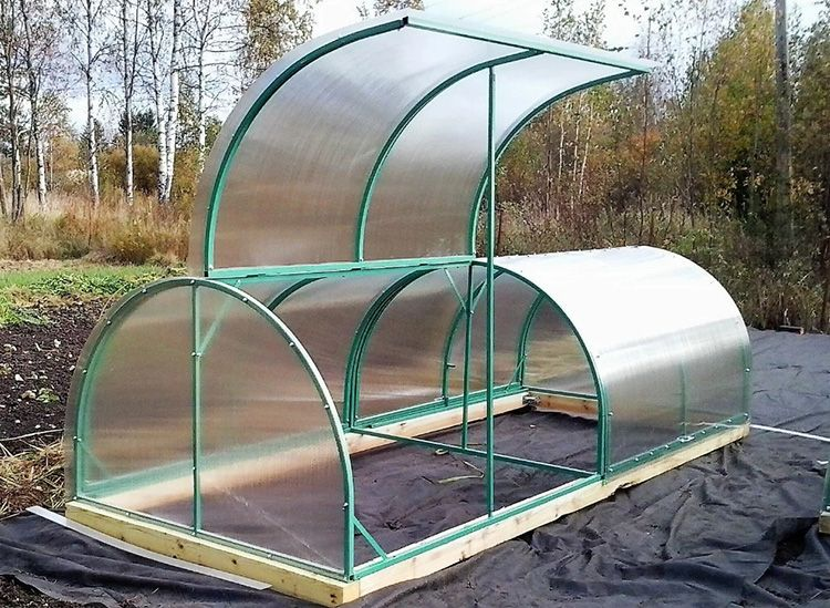 Парник «Бабочка» довольно универсален и прекрасно подходит для выращивания рассады, зелени, редиски, огурцов и т.п.