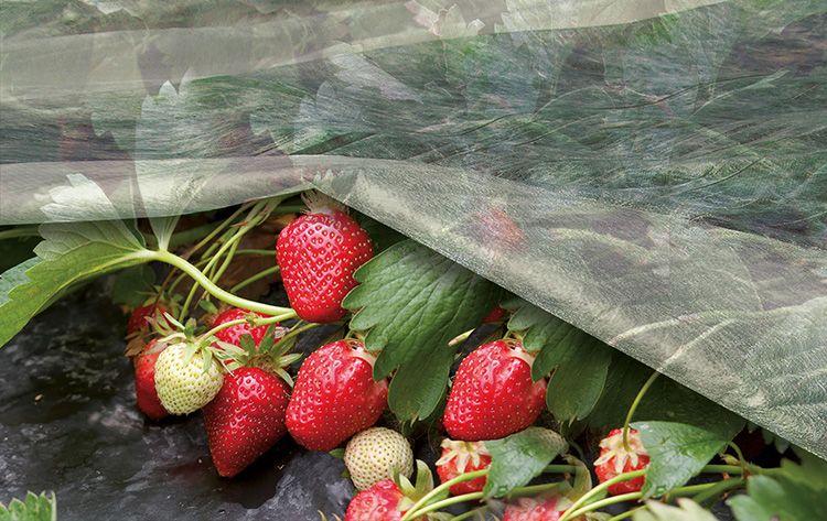 Небольшая масса исключает повреждение растений