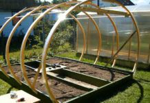 Задел на будущее: как сделать парник своими руками, чтобы на следующий год раньше всех собрать урожай (лучшие проекты – фото 50+)