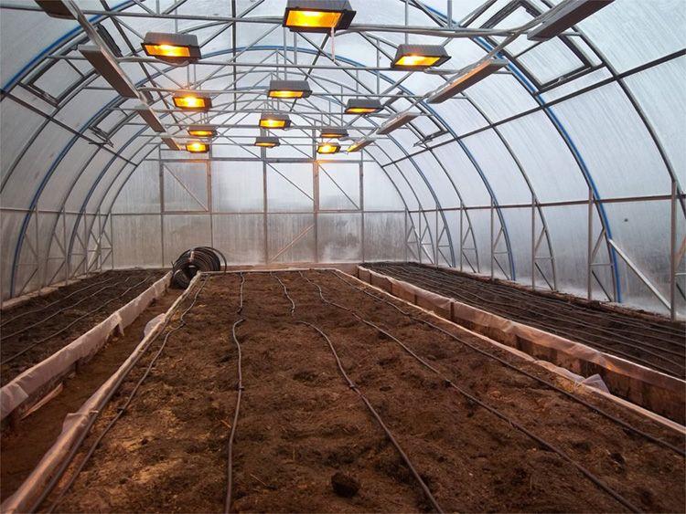 Зимняя теплица для профессионального выращивания овощей.