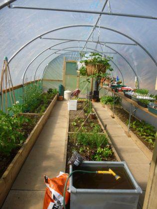 Как раньше всех собрать урожай: лучшие проекты парников своими руками (50+ фото)