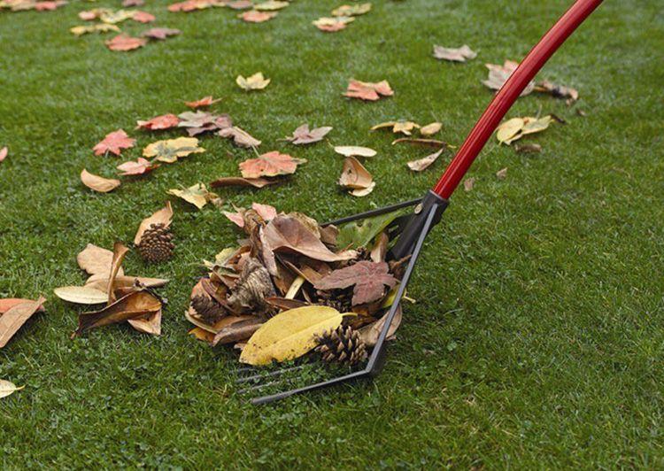 Эта необычная лопата имеет широкий функционал и становится всё более популярной среди дачников