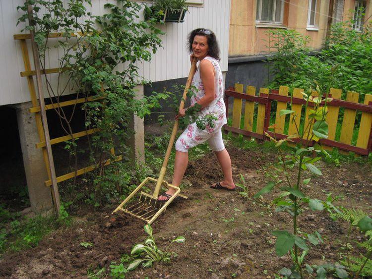 Идеальный вариант – поинтересоваться качеством инструмента у соседа по участку и попробовать поработать им своими руками
