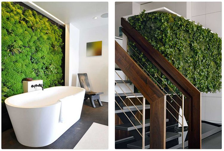 Зелёными растениями можно украсить не только одну стену, а сразу несколько. В этом случае ваше жилище превратиться в подобие сказочного убежища посреди леса.