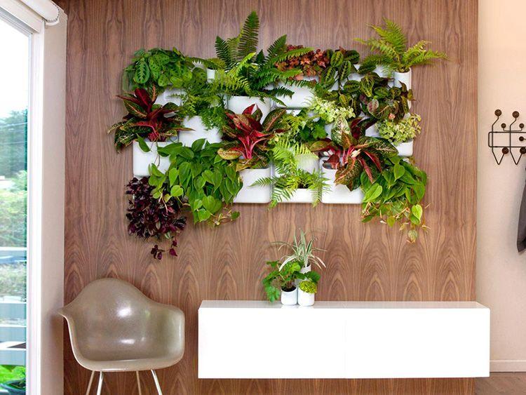 Не бойтесь комбинировать растения исходя из варианта окраса, высоты листьев, их фактуре.