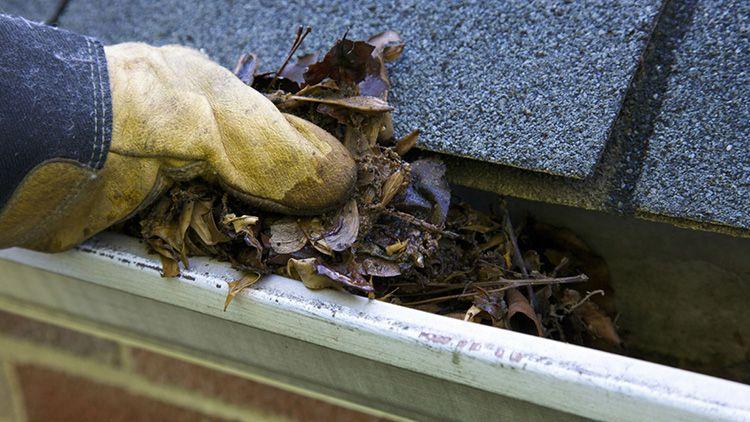 Чтобы такая крыша прослужила максимально долго, её нужно своевременно чистить от листвы и мха, следить за тем, чтобы ветки деревьев не рвали покрытие