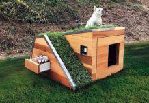 Дом для лучшего друга: как сделать будку для собаки своими руками