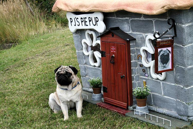 С грамотным использованием утеплителя такой собачий дом будет надёжным и тёплым, кроме того – прослужит нескольким поколениям ваших любимцев