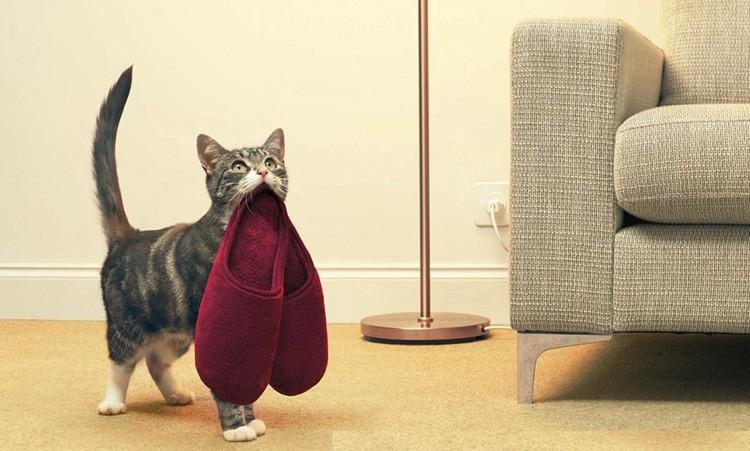 И обязательно – небольшой дежурный светильничек, чтобы не споткнуться о кота, заходя в тёмную прихожую