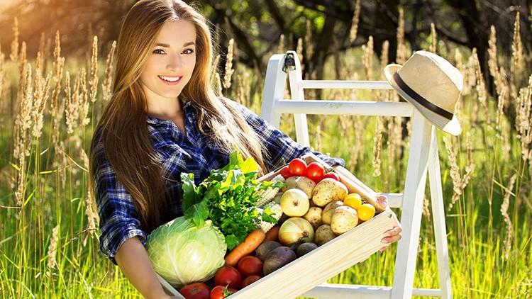 Самоохлаждающиеся склады позволят длительно хранить овощи и фрукты, при этом не потребуют расходов на электроэнергию. Заманчиво, не правда ли?
