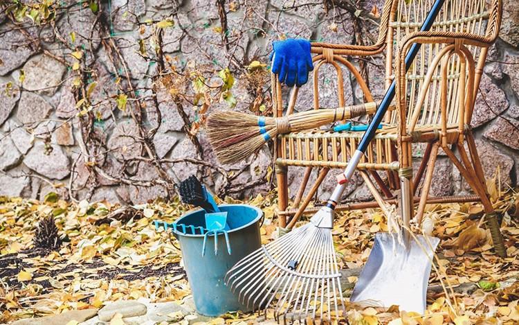 Перед зимой нужно подготовить сад, огород и дом к вашему отсутствию
