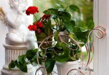Советы дизайнеров для домашней оранжереи: подставка для цветов на подоконник