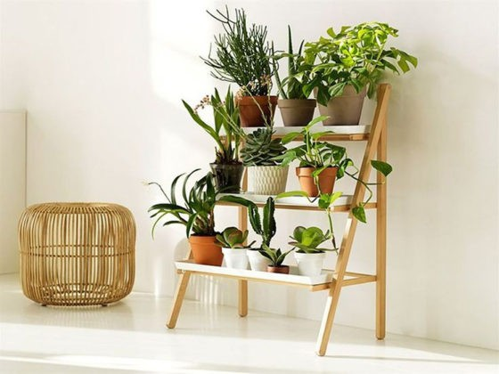 🌺 Советы дизайнеров для домашней оранжереи: подставка для цветов на подоконник