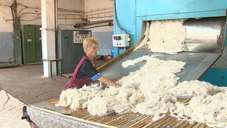 Чтобы получить конечный продукт, шерсть тщательно промывают с использованием специальных химикатов, удаляющих секрет и смазку