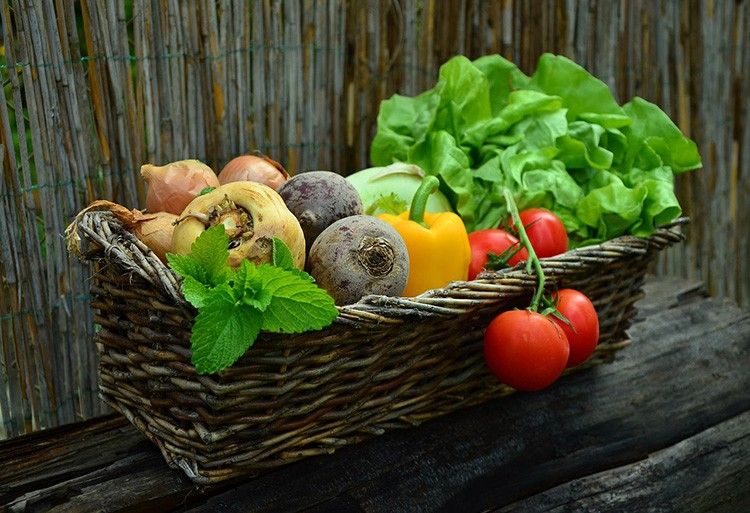 Вырастить урожай непросто, но ещё нужно приложить усилия, чтобы сохранить его до весны