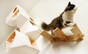 Мастерим чудесный домик для любимой кошки своими руками