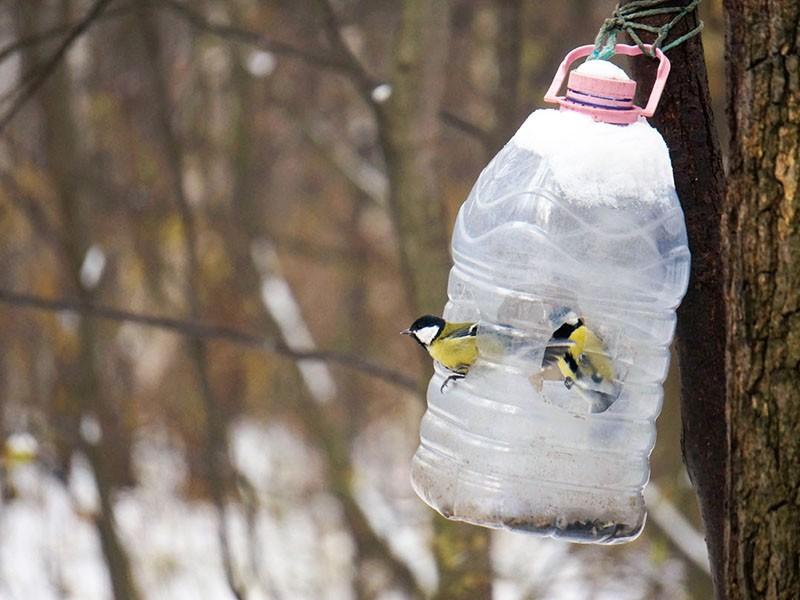 кормушка для птиц из пятилитровки