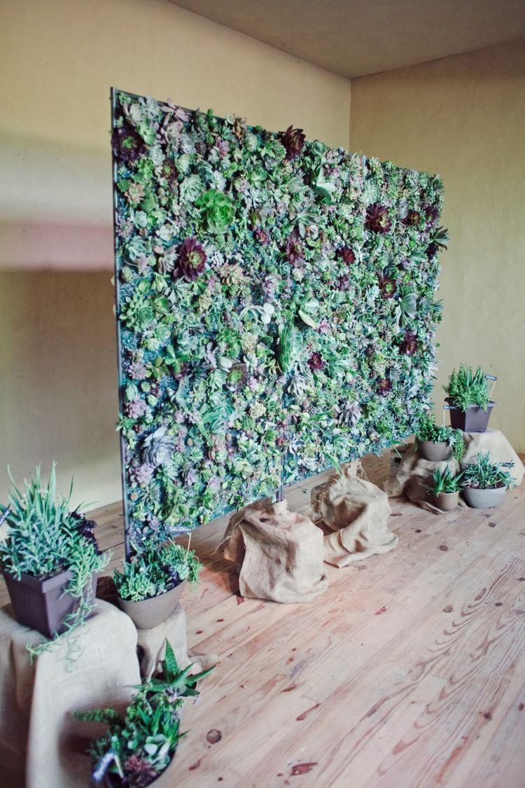 Из неприхотливых растений, способных чудесно расти и в вертикальном положении, создают целые стены и широкоформатные панно.