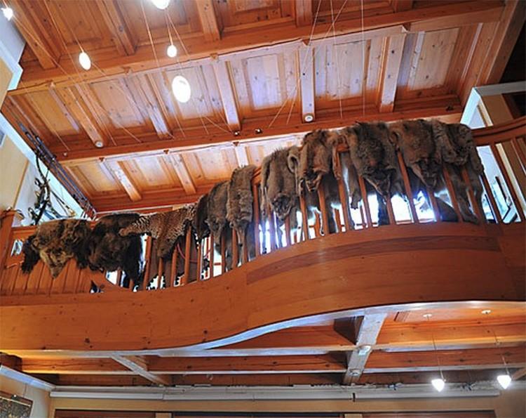 С перил второго этажа свисают чучела животных, которые были подарены артисту поклонниками