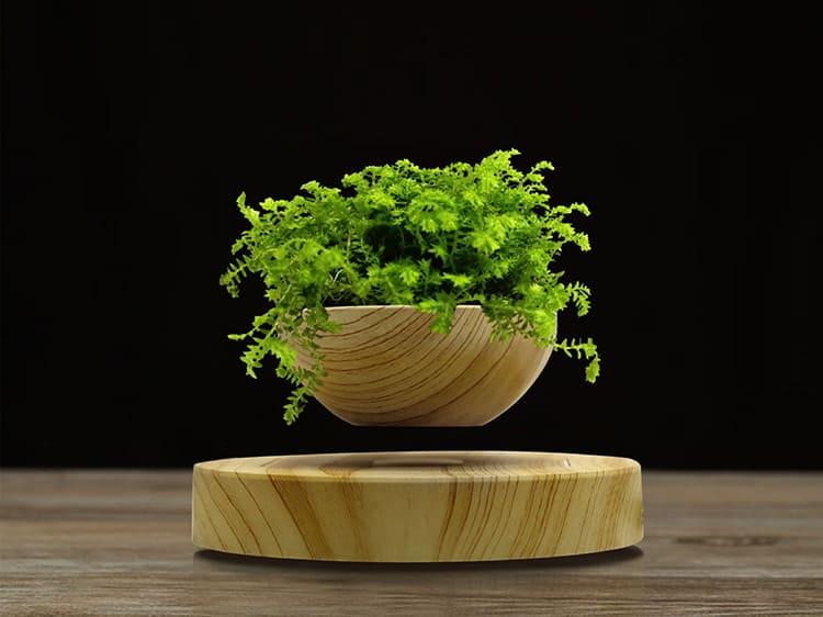 Парящая над поверхностью ваза с цветами или растениями – удивительное украшение интерьера