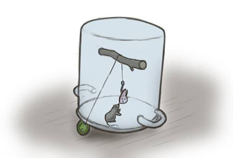 Маленькая ненужная кастрюлька тоже поможет изловить вредителя.