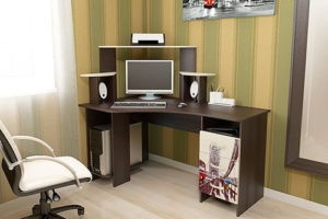 «ТРИЯ» Стол компьютерный «Бумеранг-3Н (М)»