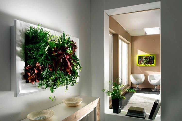 Живая картина из растений с яркой листвой