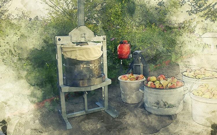 Пресс для отжима сока гораздо мощнее бытовой соковыжималки и пригодится для переработки большого урожая.