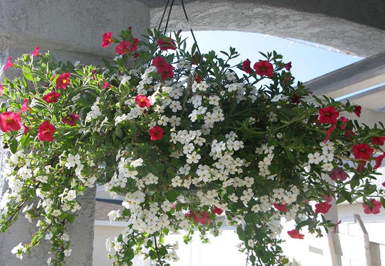 В такое кашпо можно поместить имитацию вьющихся растений с цветами или яркой зеленью