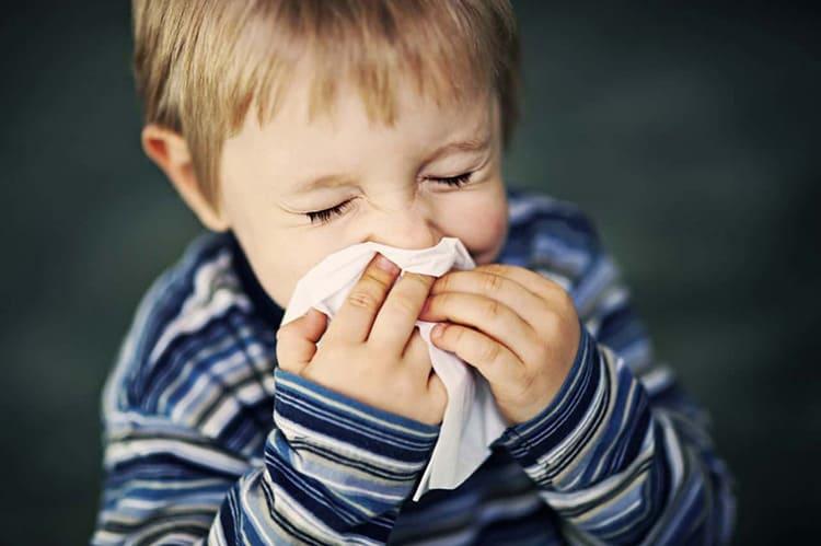 Если человек страдает аллергией на шерсть животных, ему не подойдёт такое одеяло. В таком случае лучше пользоваться синтетическими аналогами