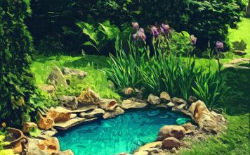 Обустраиваем пруд: 10 необходимых вещей от Алиэкспресс