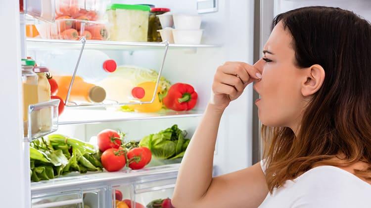 Хороший пластик не добавит лишних запахов продуктам