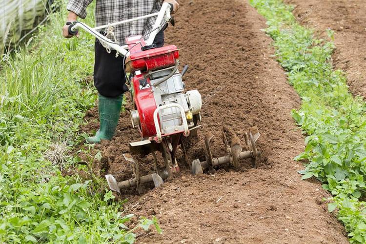 Мотокультиватор значительно облегчает жизнь владельцам небольших земельных участков