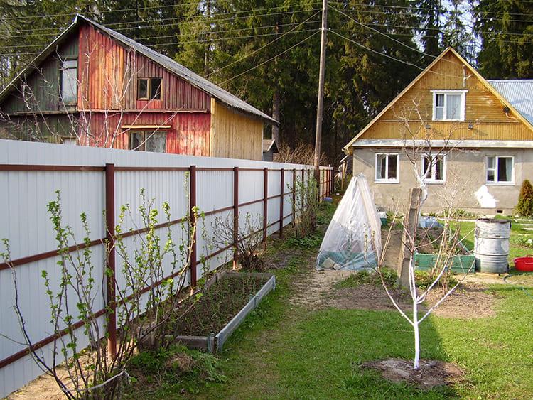 Грубейшее нарушение – кустарник посажен вплотную к забору