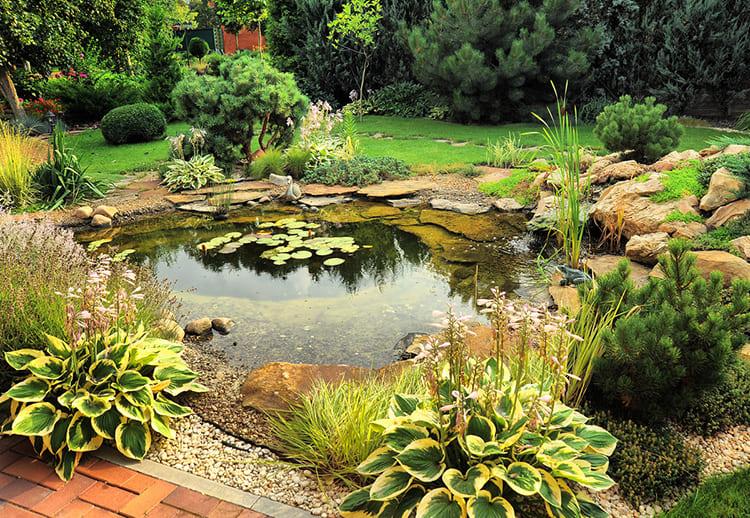 Садовый пруд – это украшение сада, у которого вы будете с удовольствием проводить свободное время
