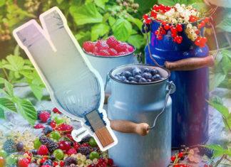 Самодельное приспособление для сбора ягод за 3 копейки