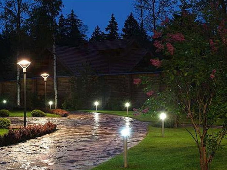 Светильники бывают разного вида ФОТО: avatars.mds.yandex.net