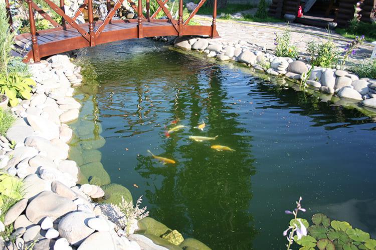 Есть ещё мнение, что ПВХ может выделять в воду хлористые соединения. Это спорная тема, так как, несмотря на массу скептических доводов, в тысяче таких прудов благополучно живут и водные растения и рыбы, без видимых признаков отравления