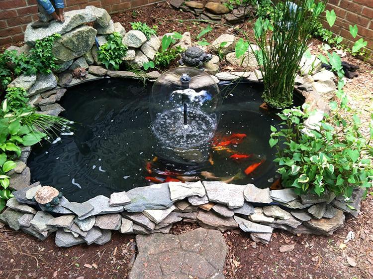 Нужно отметить, что в такой небольшой водоём вы можете без сомнений выпустить золотых рыбок, плёнка, в принципе, безопасна