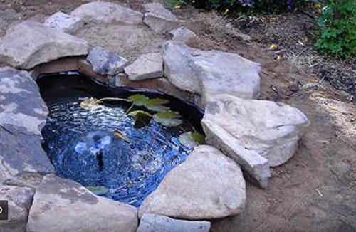 Выбор и виды плёнки для пруда с рыбками - как сделать идеальный водоём