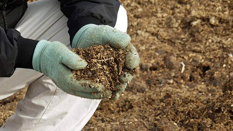 При выборе состава следует ориентироваться на вид выращиваемых растенийФОТО: vipsad.com