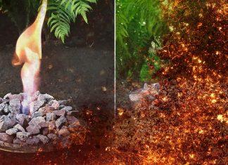 На что я потратила прошлые выходные: садовая чаша с живым огнём