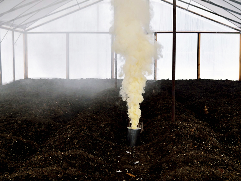 Чем обработать землю в теплице осенью от болезней и вредителей?