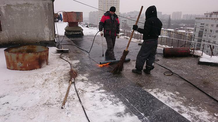 Но для успешного процесса всё же необходимо, чтобы температура воздуха прогрелась хотя бы до 5ºСФОТО: sovetkorolev.ru.