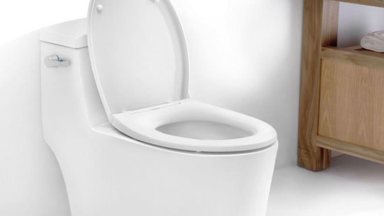 Обычный моноблок – унитаз и бачок составляют единое целоеФОТО: shower5.ru